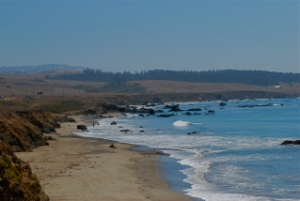 Beach at San Simeon
